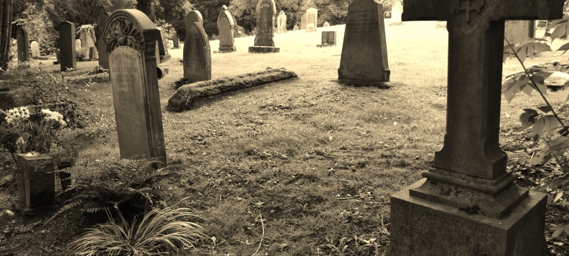 The Heady Days of Student bodysnatchers