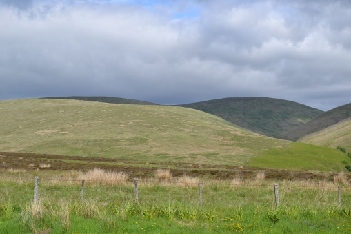 On the way to Old Logie